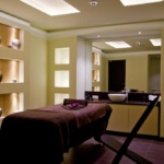 LION HOTEL BOROVETS 7