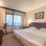 LION HOTEL BOROVETS 9